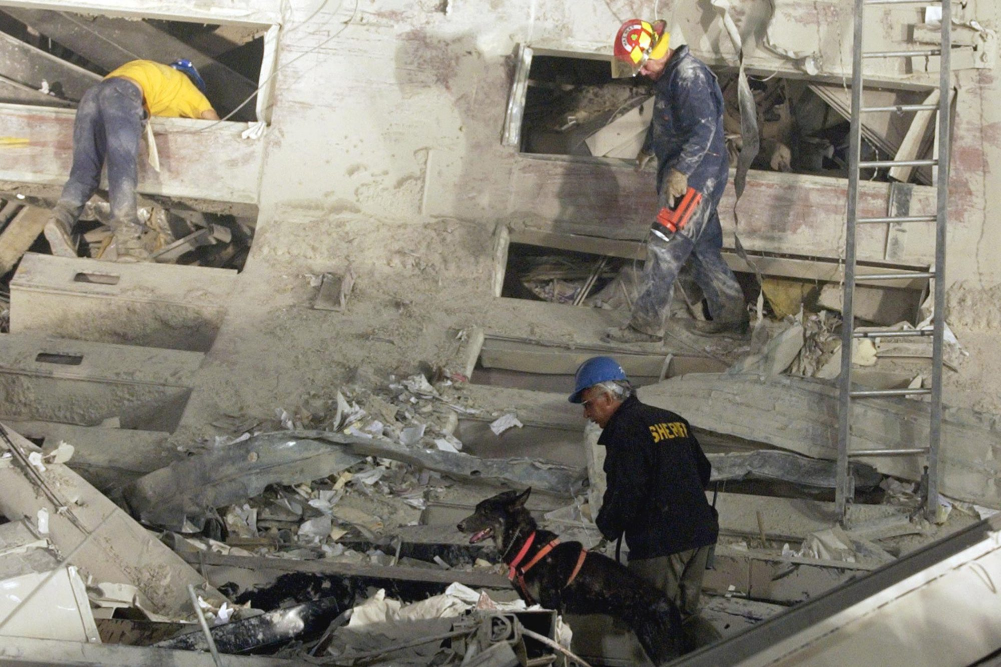 search and rescue 9/11 Dog with three rescuers searching rubble
