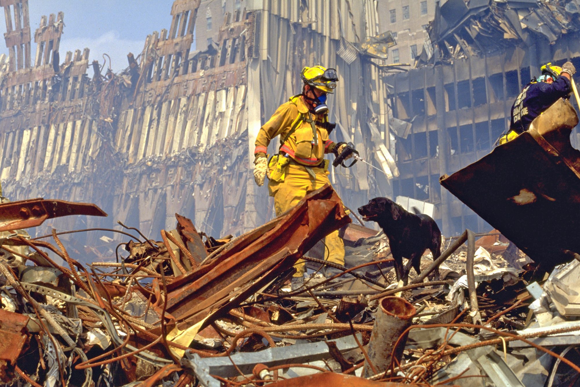 9/11 service dog standing in rubble with FEMA rescuer in yellow coat
