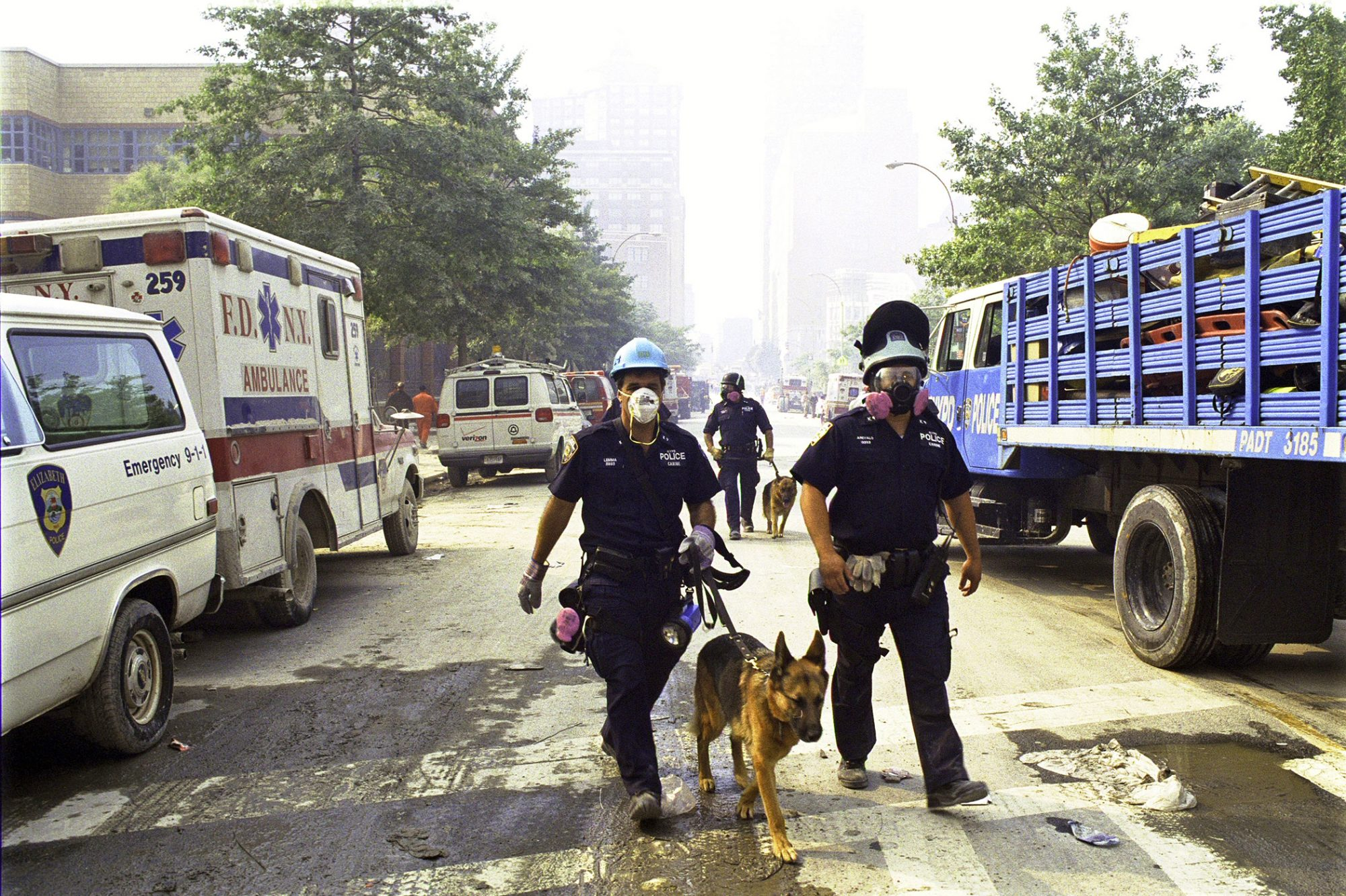 Police bringing a rescue dog to search for survivors of the 9/11 attack