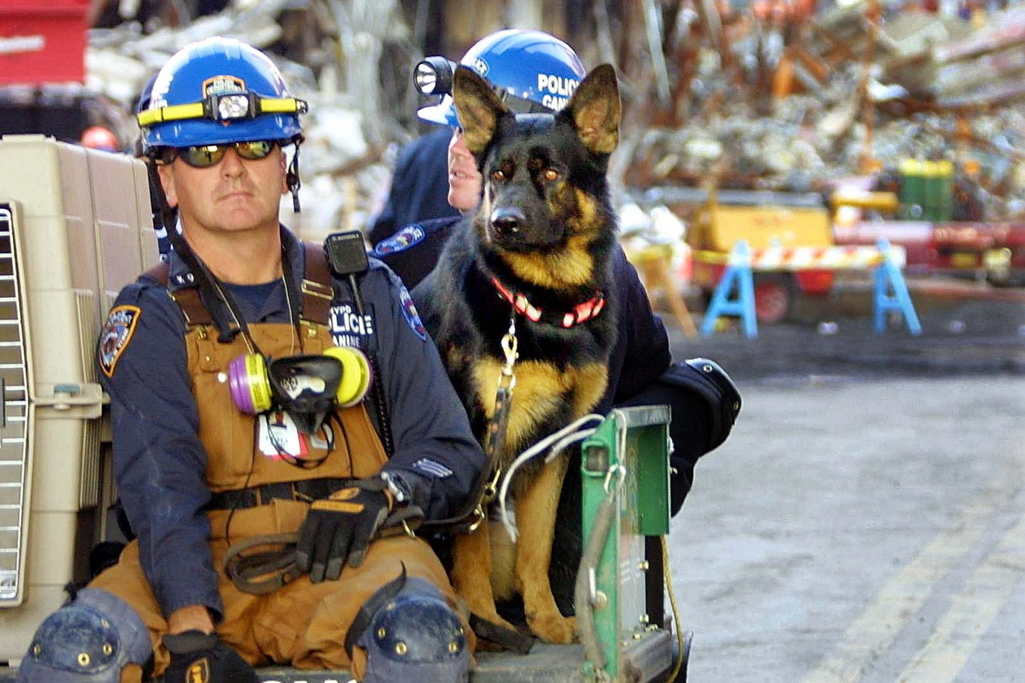 9/11 Dog sitting with two men in blue helmets