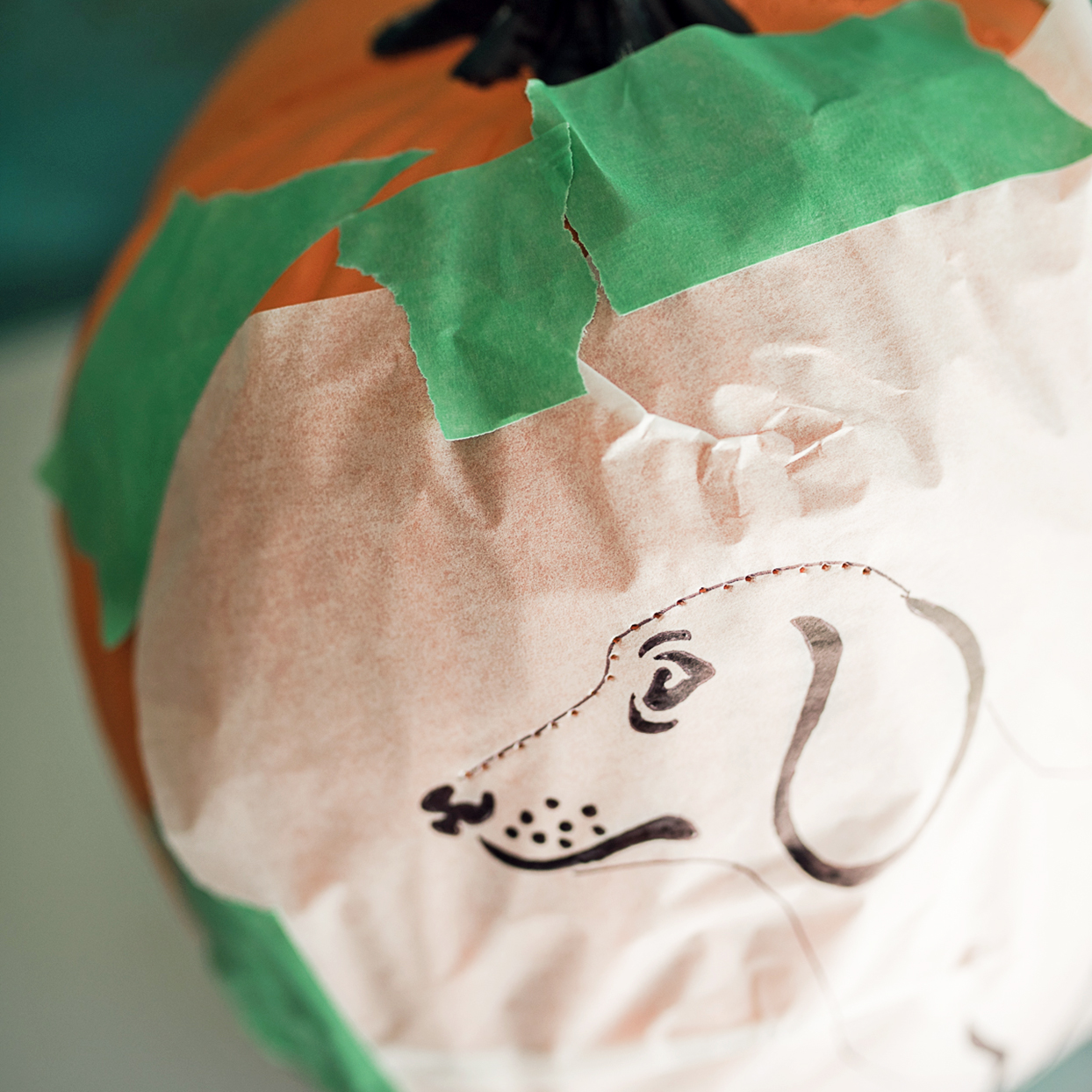 dog pumpkin carving stencil taped onto orange pumpkin with pinpoints