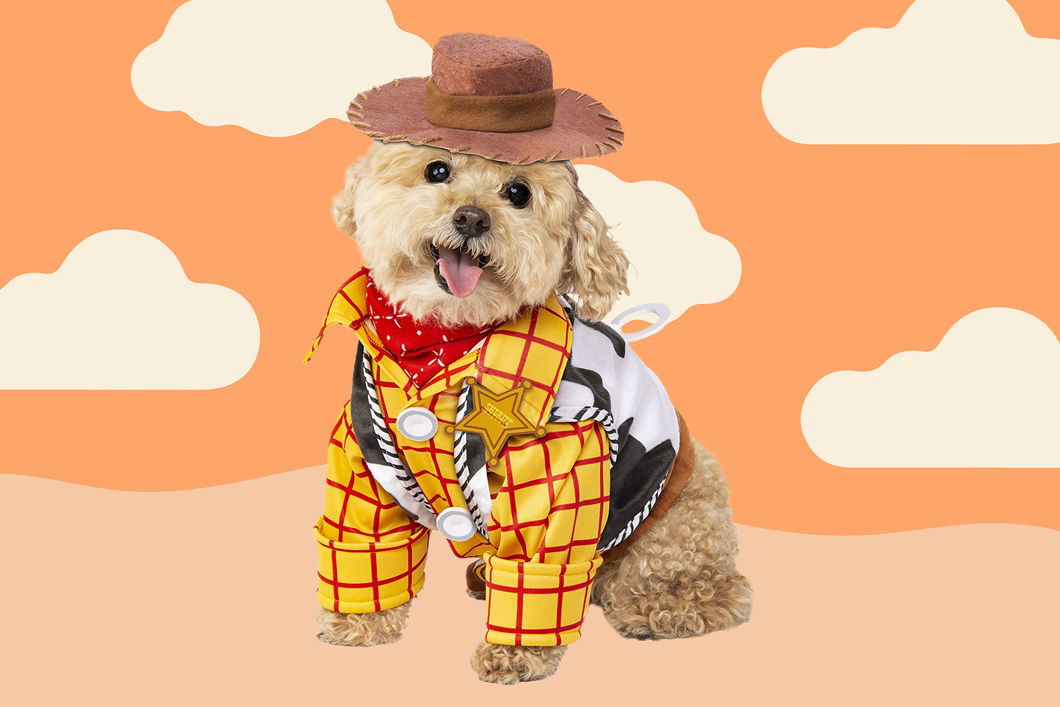 small dog version of a Woody Halloween costume