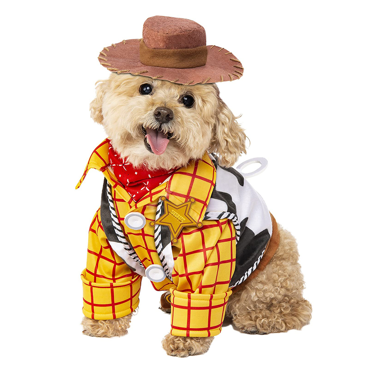 Dog wearing a Rubie's Disney: Toy Story Pet Costume on a white background