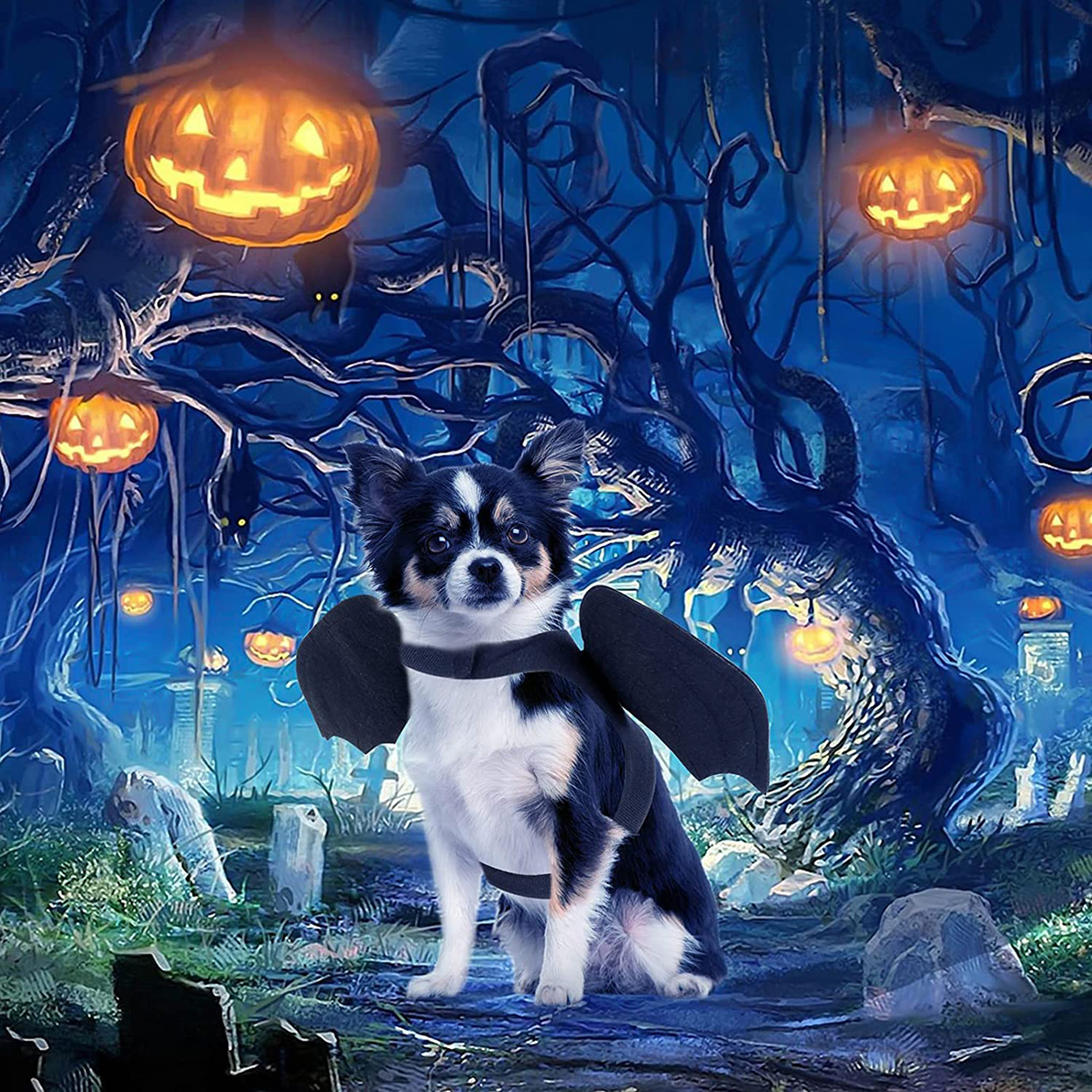 Dog wearing a Rypet Pet Halloween Bat Wings Costume on a graphic halloween themed background