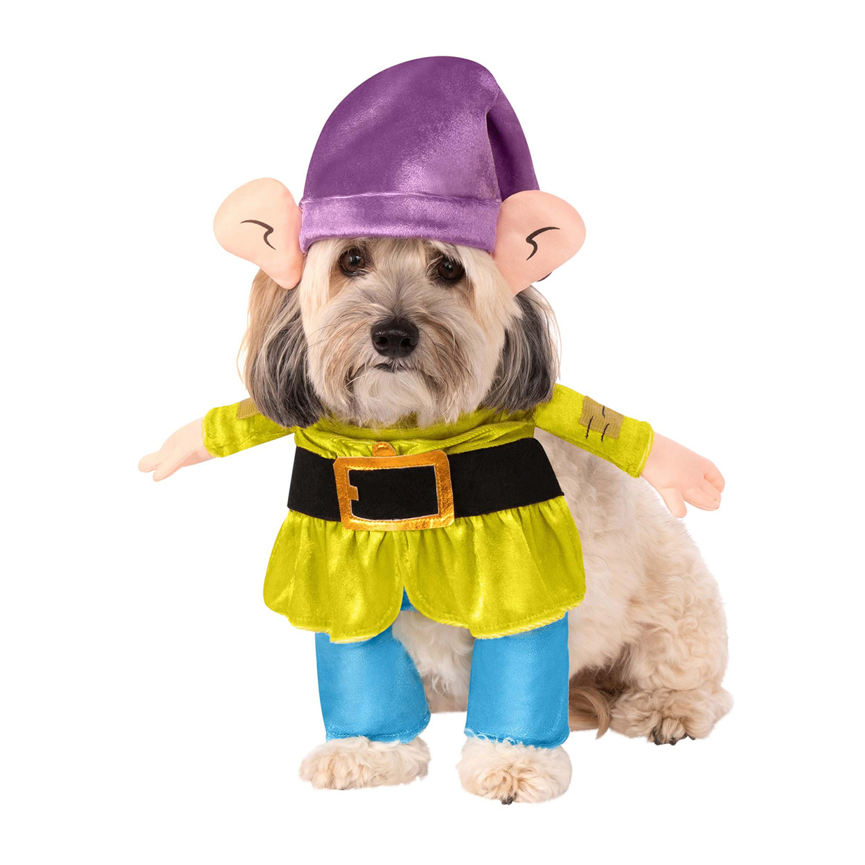 Dog wearing a Snow White and the Seven Dwarfs Dopey Costume on a white background