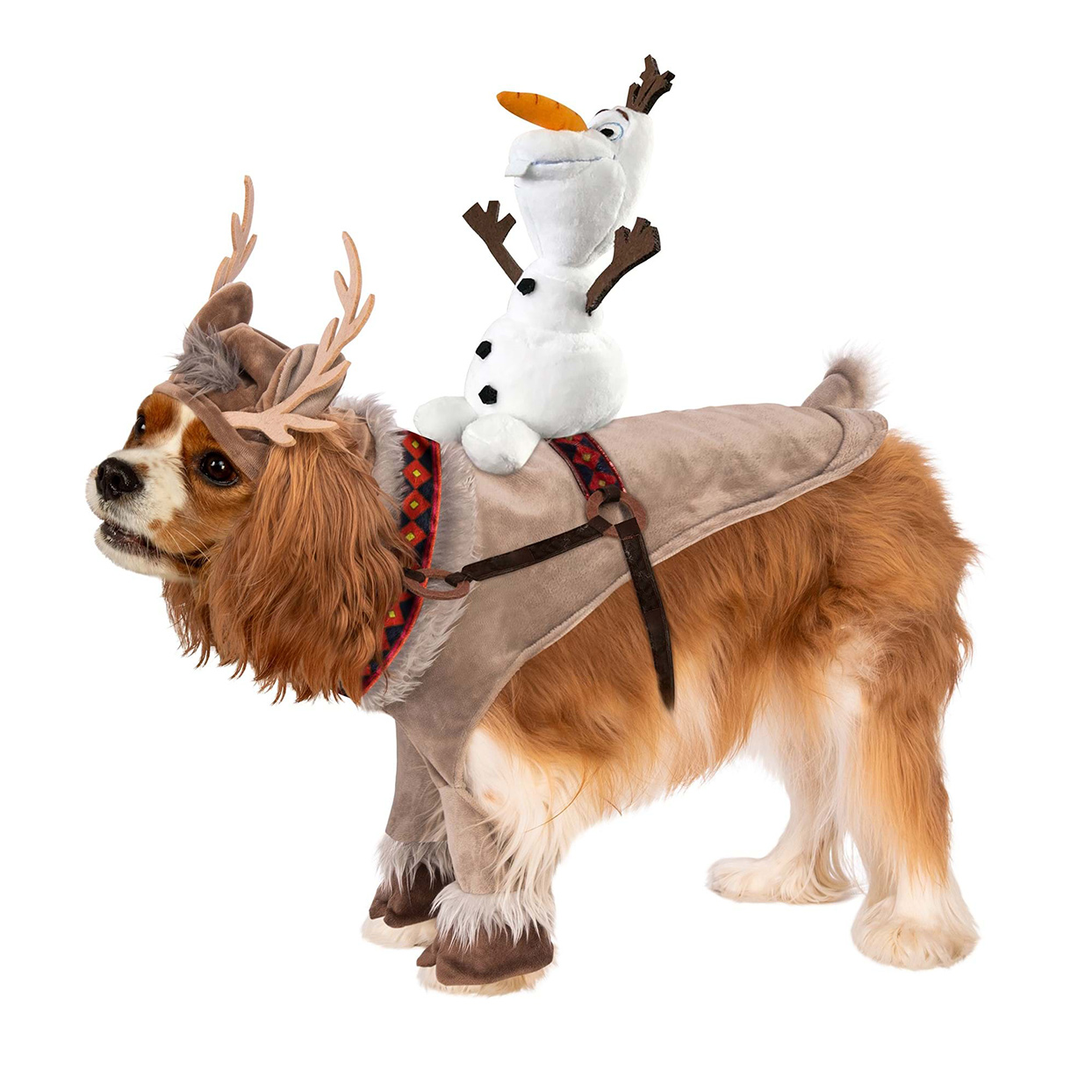 Dog wearing a Frozen Sven and Olaf Pet Costume on a white background