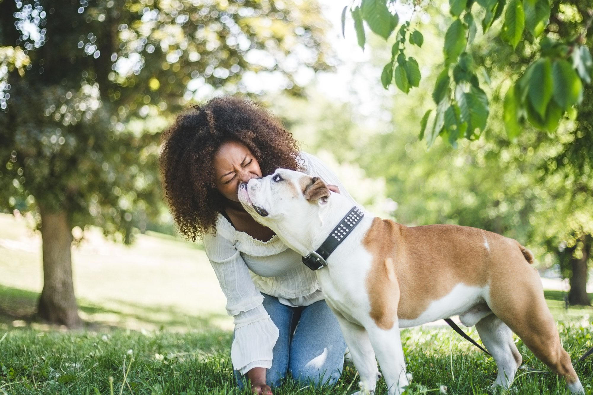 woman being kissed by her english bulldog in a park