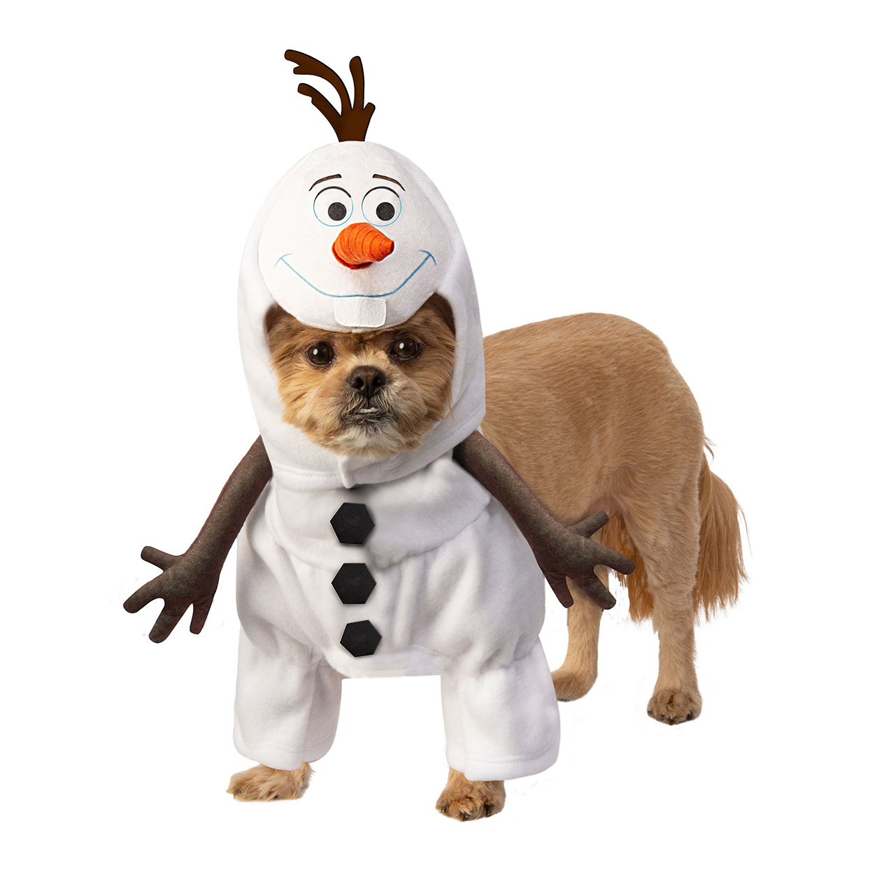 Dog wearing a Frozen Olaf Pet Costume on a white background