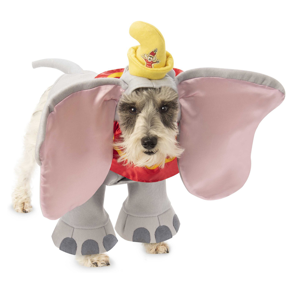 Dog wearing a Rubie's Costume Company Dumbo Costume on a white background