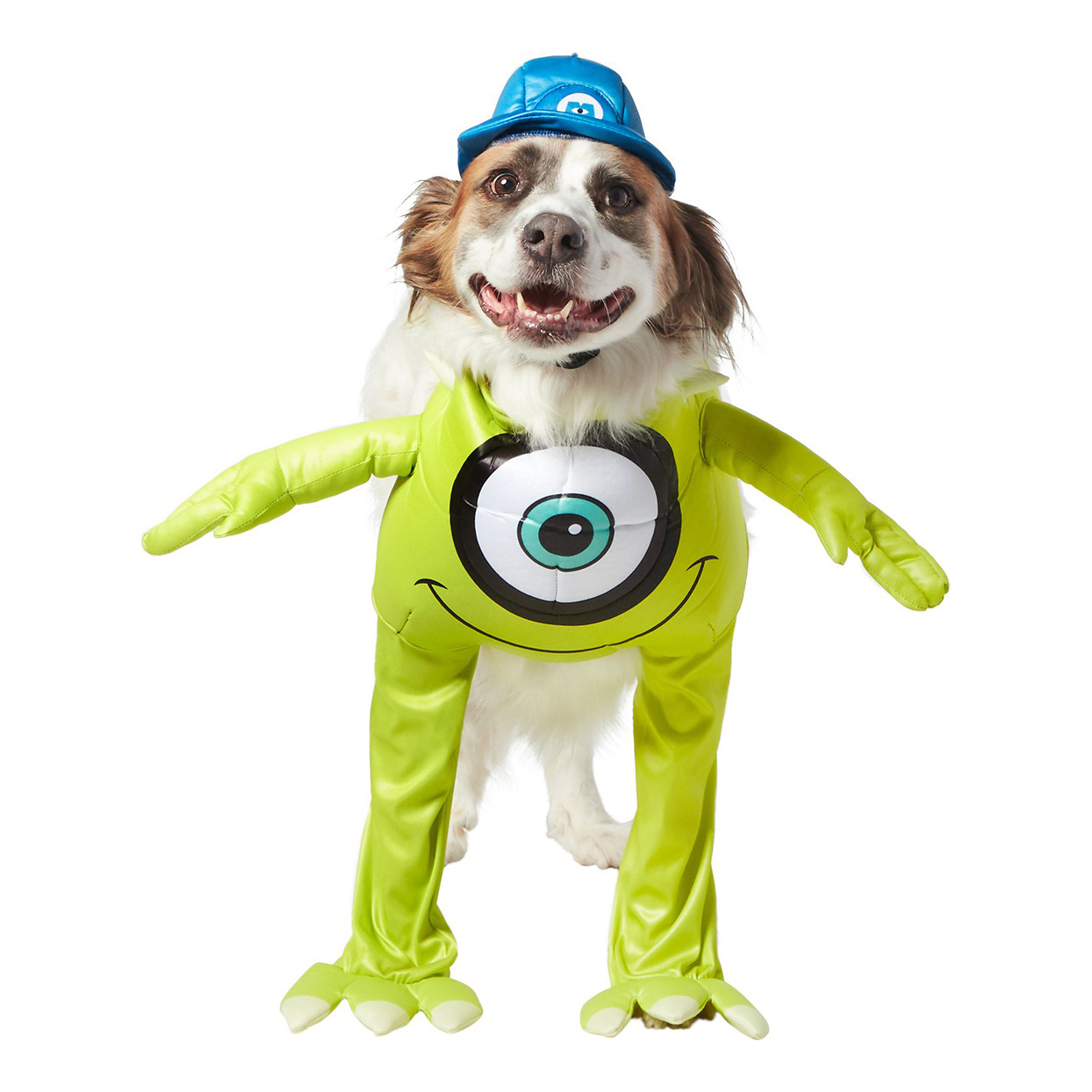 Dog wearing a Rubie's Costume Company Monster's Inc Mike Costume on a white background
