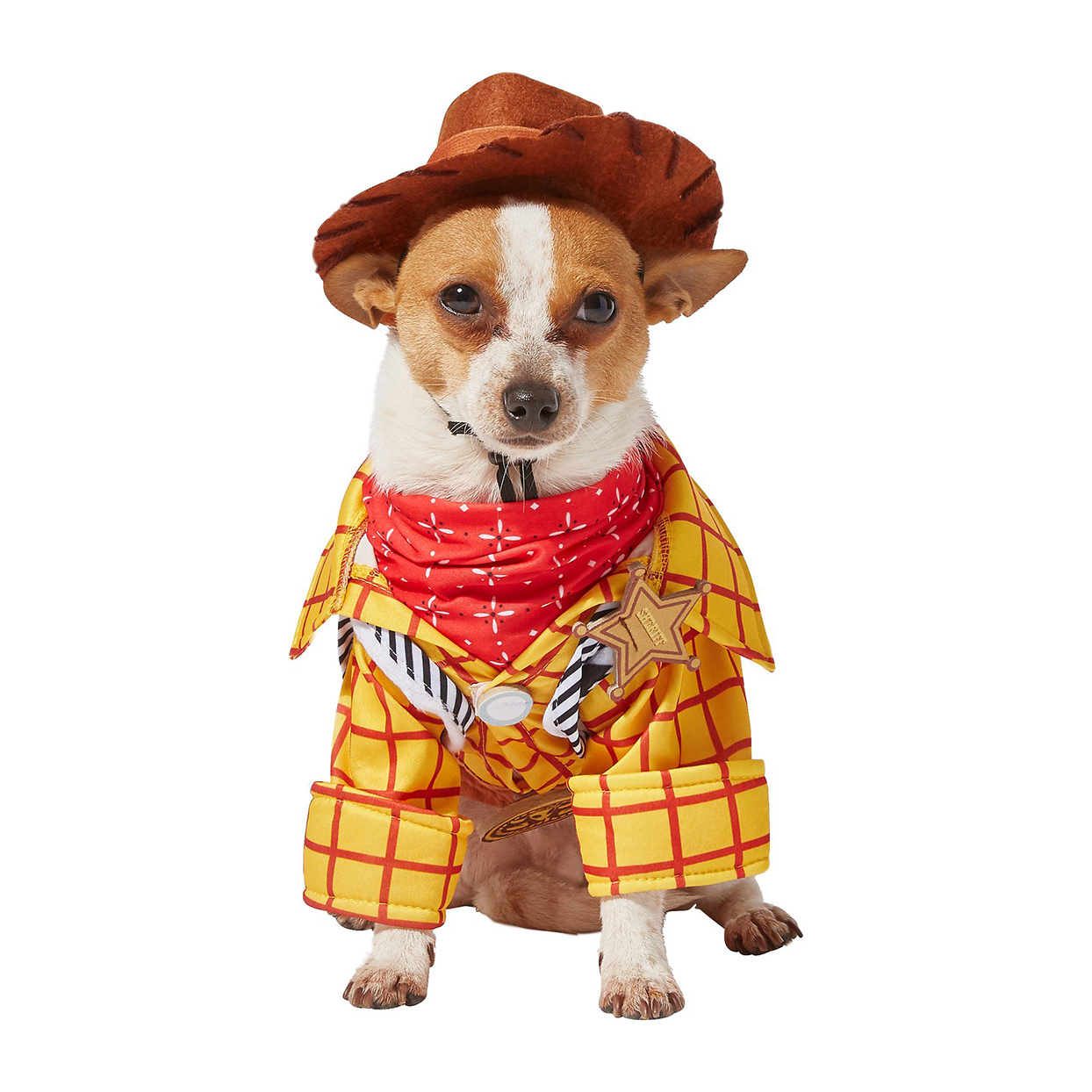 Dog wearing a Rubie's Costume Company Toy Story Woody Costume on a white background