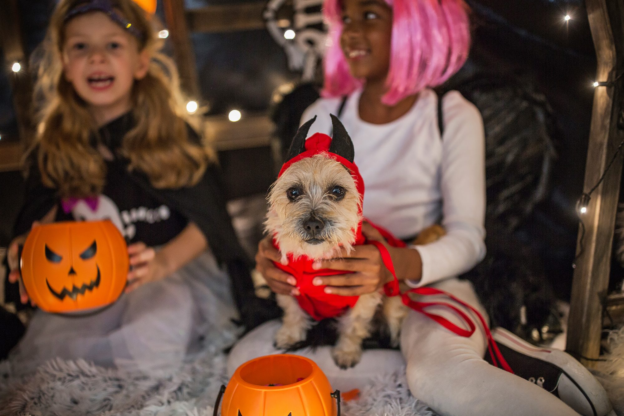 trick or treater holding small dog in devil costume