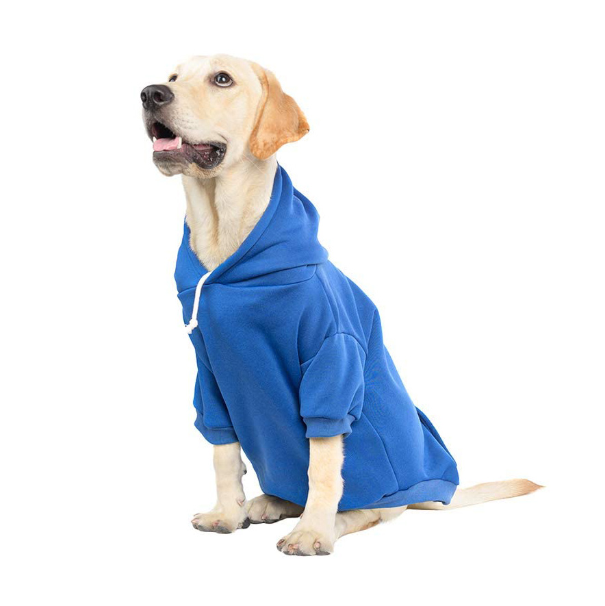 Dog wearing a Basic Dog Hoodie Sweater on a white background