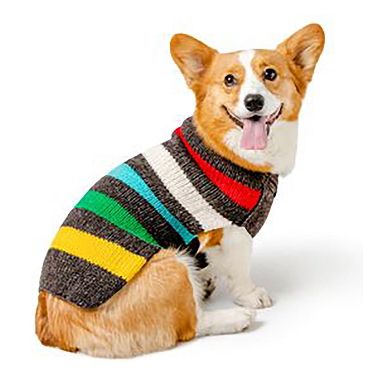 Dog wearing a Chilly Dog Charcoal Striped Wool Sweater on a white background