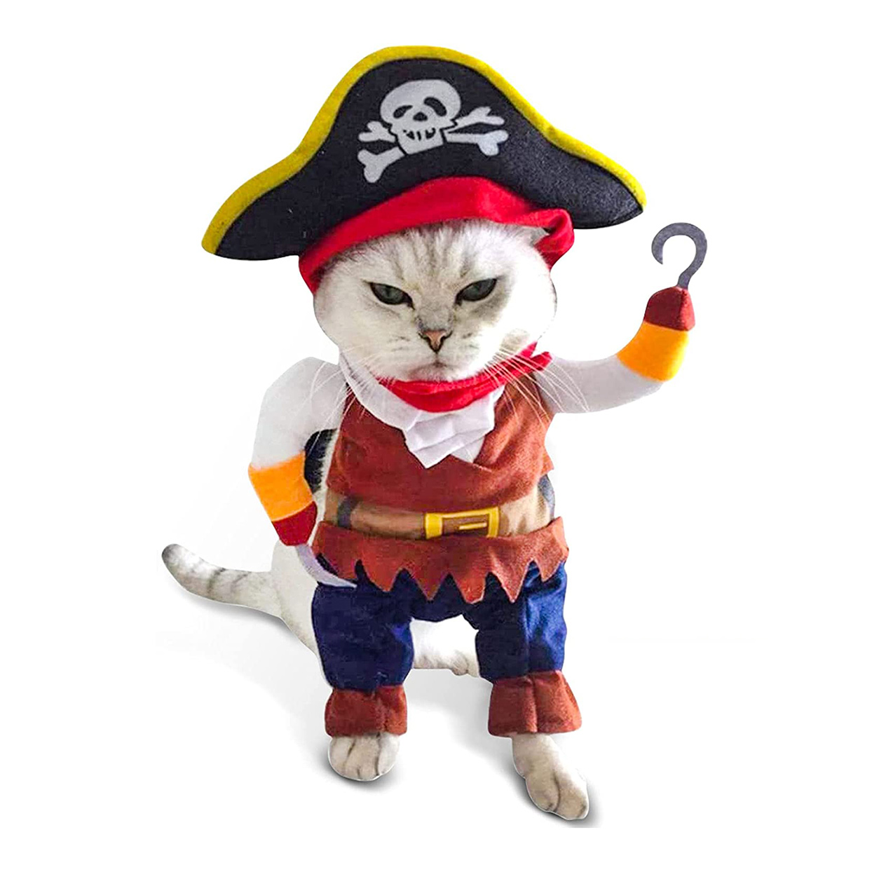 Cat wearing a Funny Cat Pirate Costume on a white background
