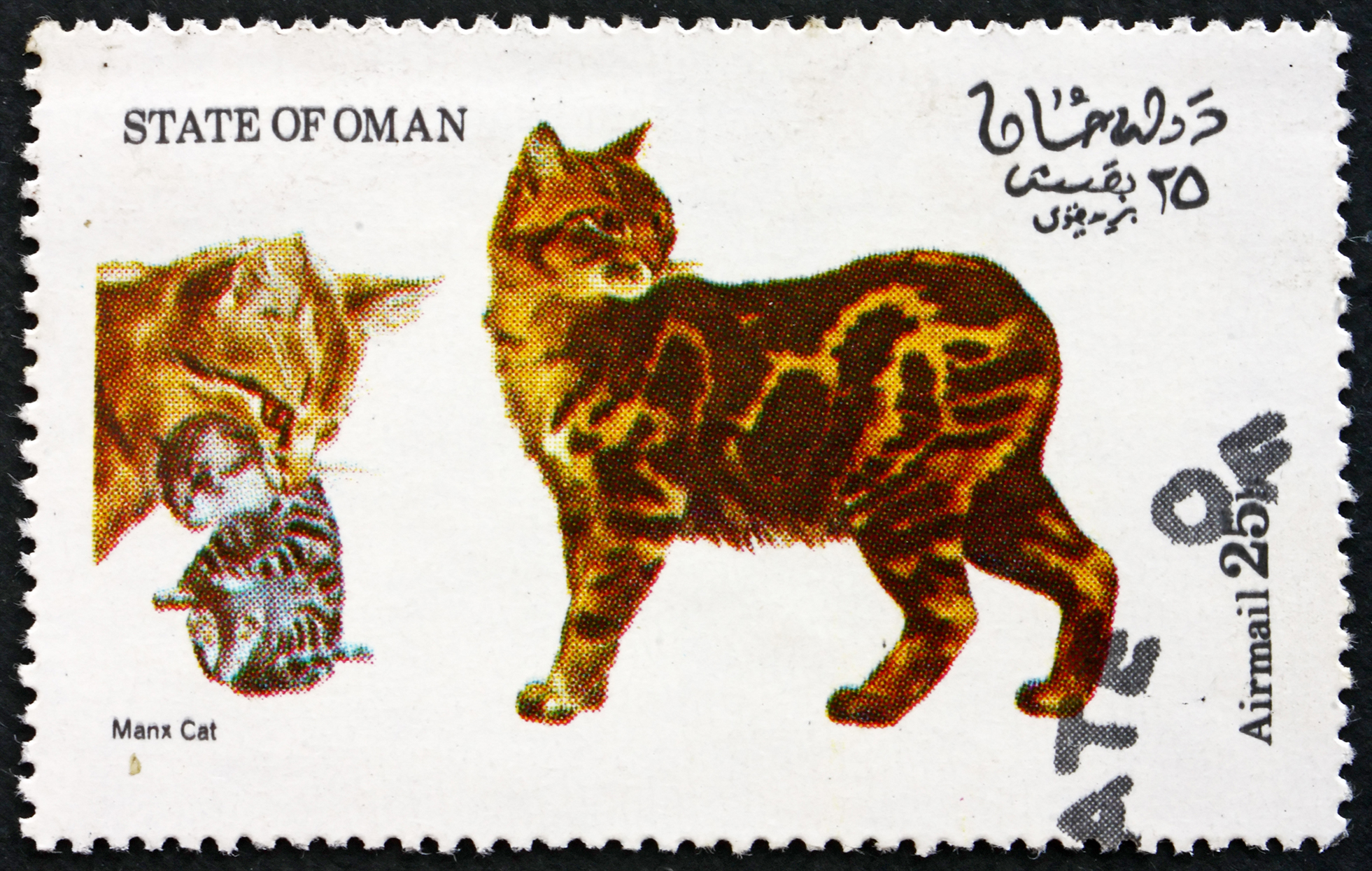 max cat vintage postage stamp drawing of three cats