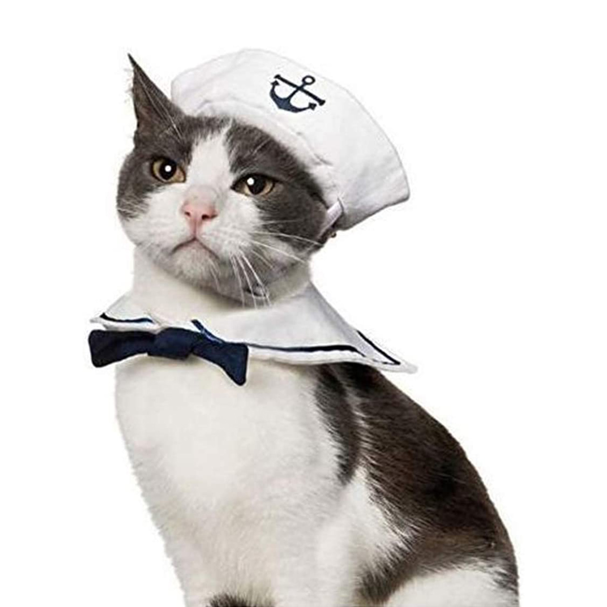Cat wearing a NAMSAN Pet Sailor Costume on a white background