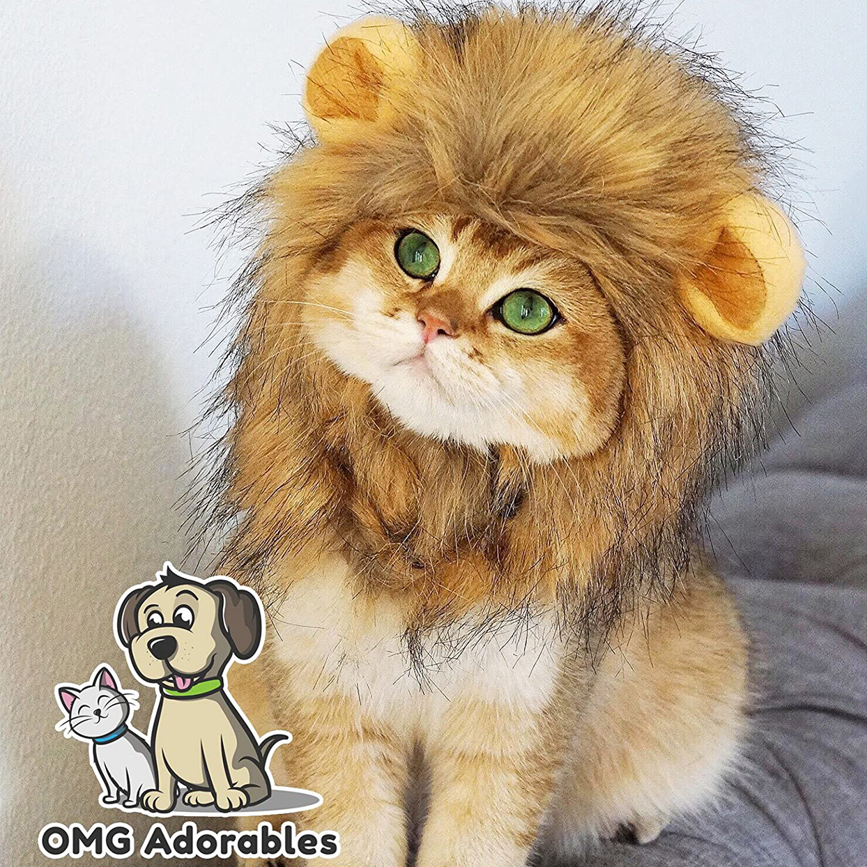 Cat wearing a OMG Adorables Lion Mane Costume for Cats on a white background