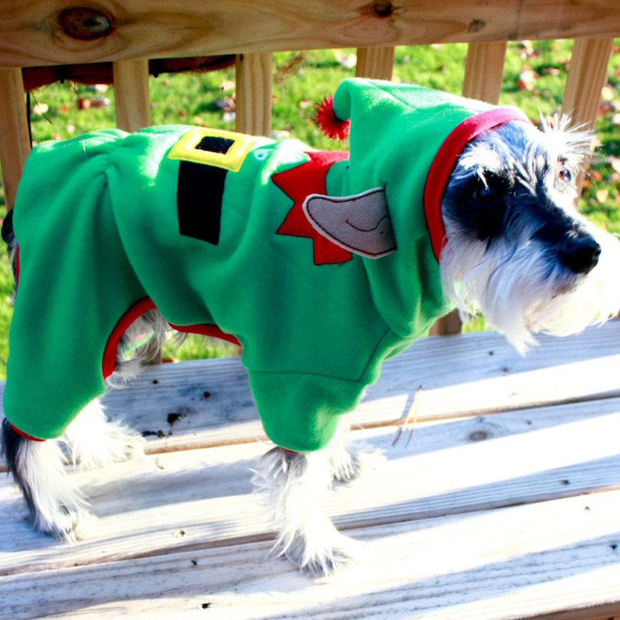 Dog wearing Bow Wow Pet Wear Dog Elf Pajamas standing on a wooden deck
