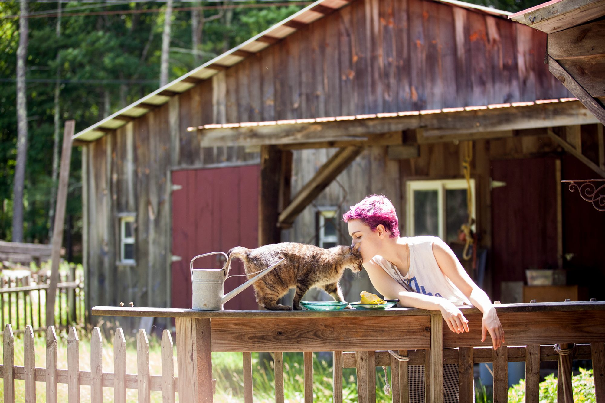 person with pink dyed hair kissing their cat with flea dirt on the head outside on a wood railing next to a barn
