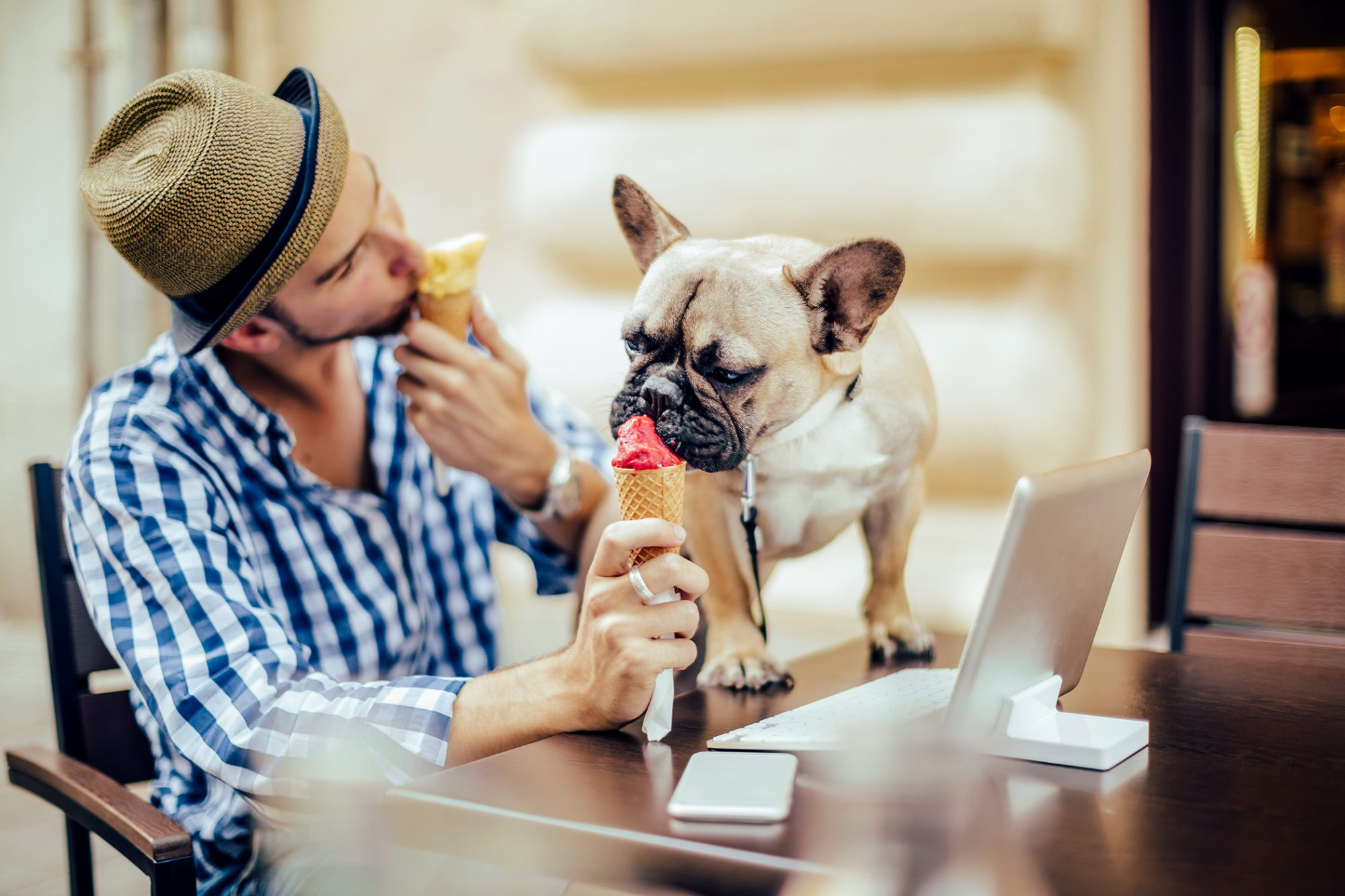 Young man sharing ice cream with his french bulldog