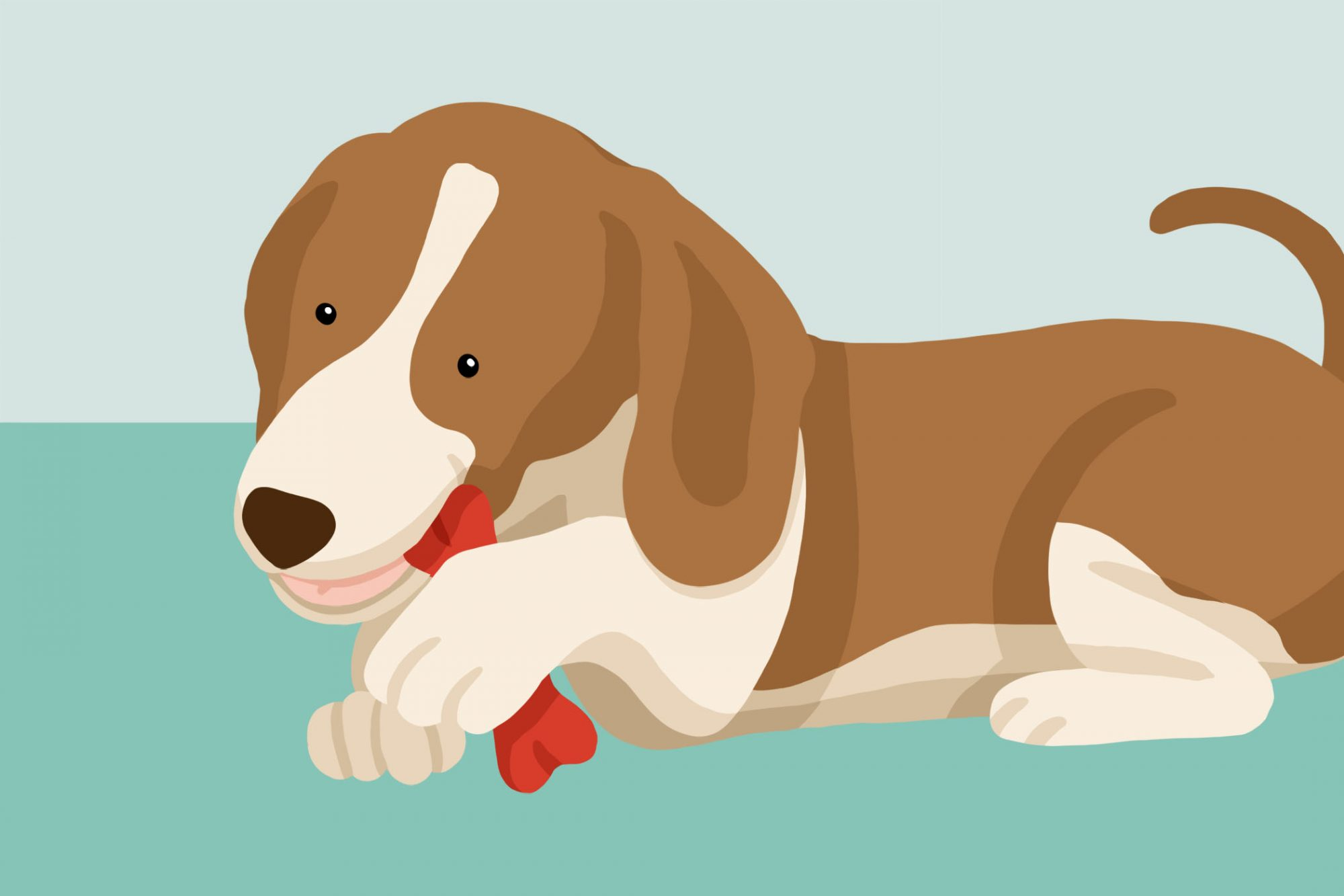 illustration how to help a choking dog dog chewing a bone