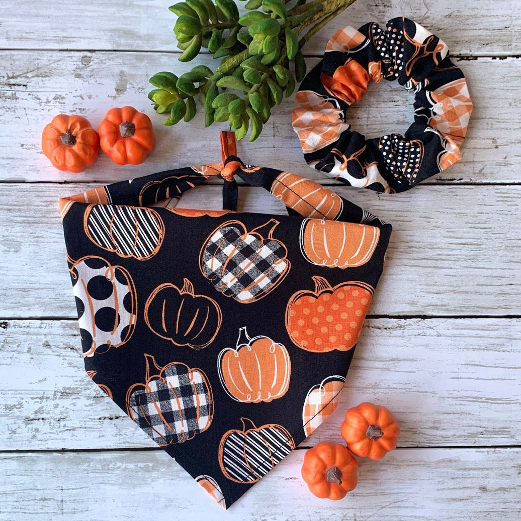 Photo of a UrbanPetStore Pumpkin Patch Dog and Owner Matching Bandana and Scrunchie on a wood background