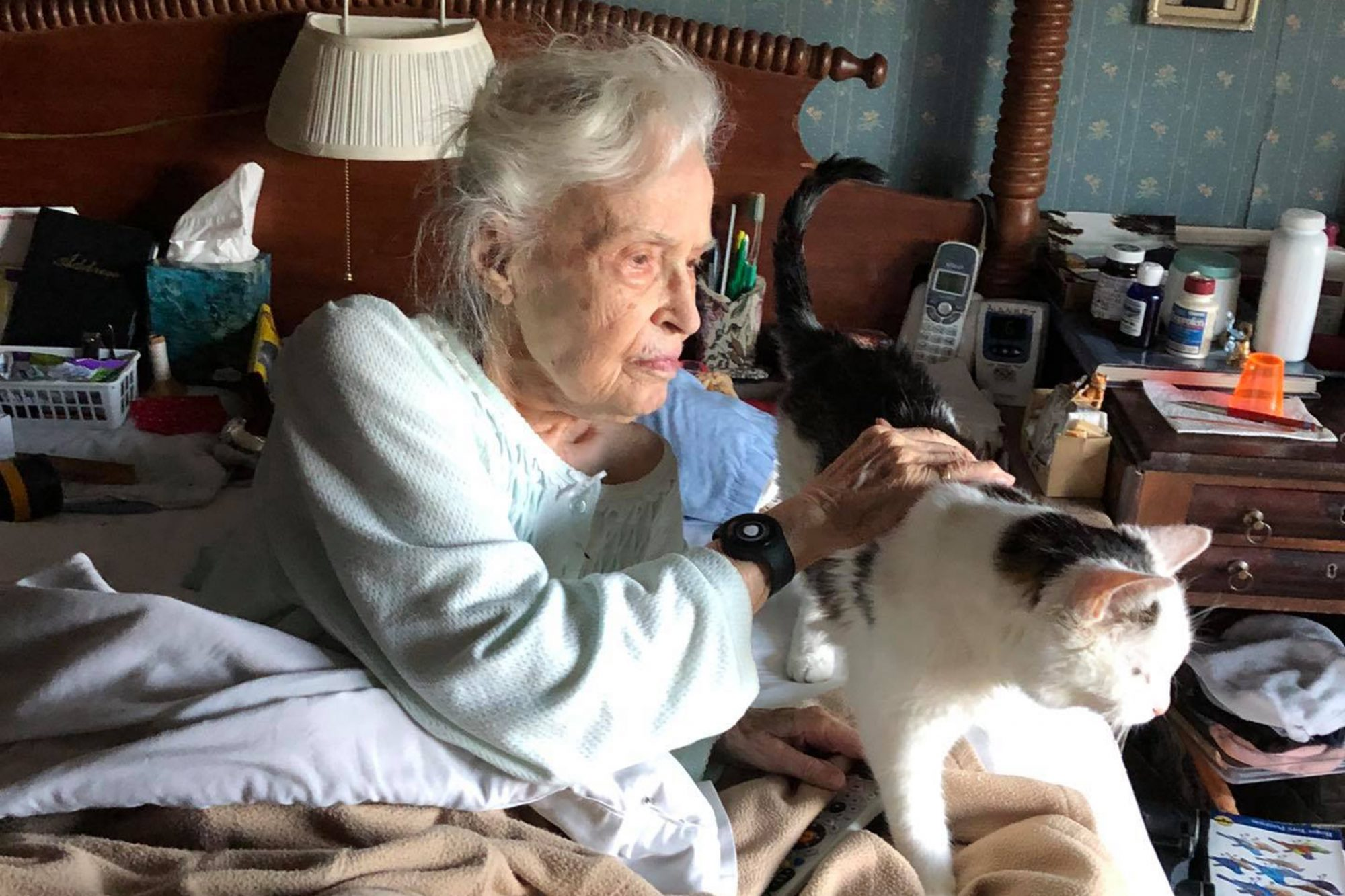 elderly woman holds her senior cat she just adopted