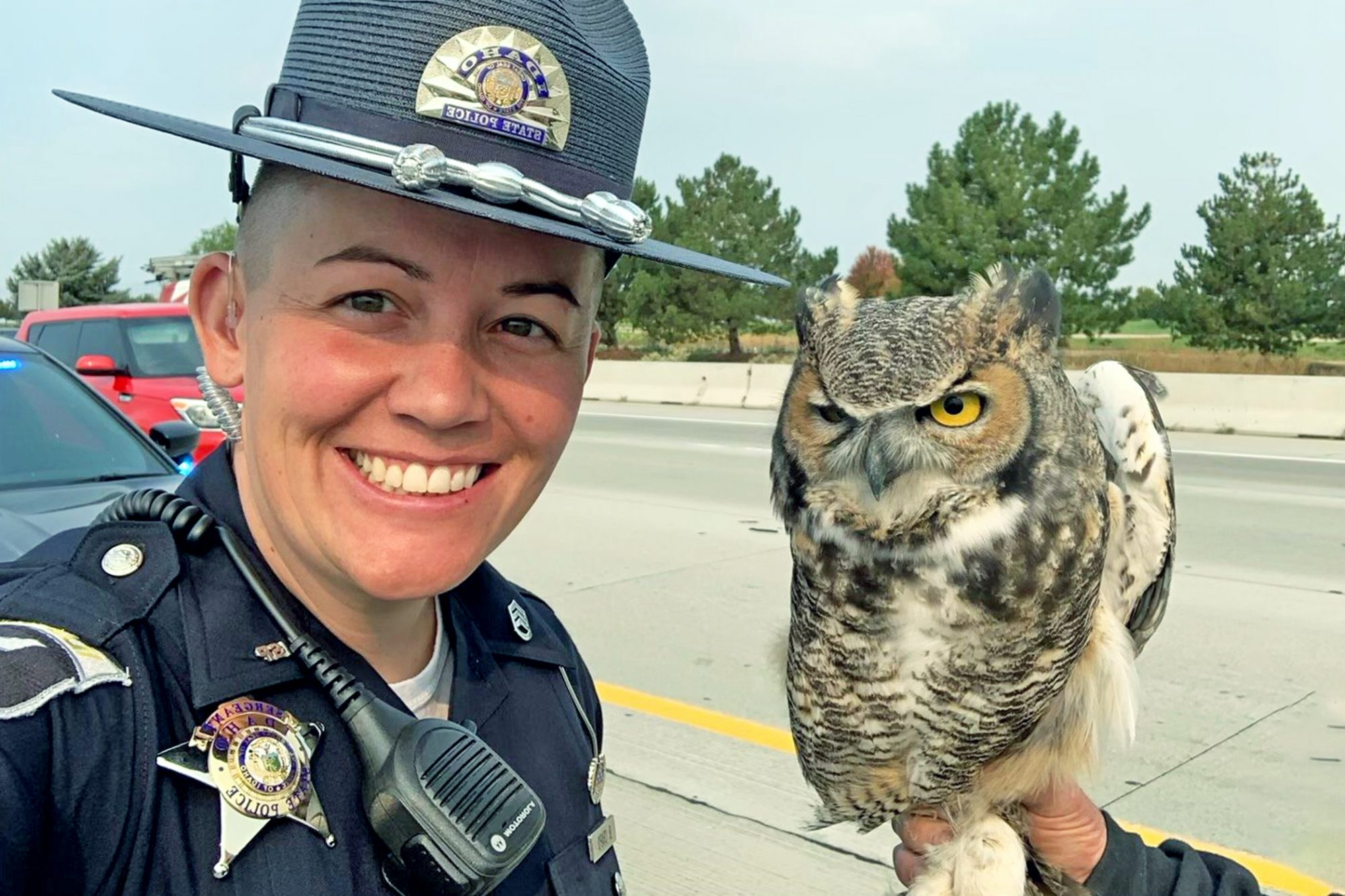 Idaho officer with the owl she saved from the highway