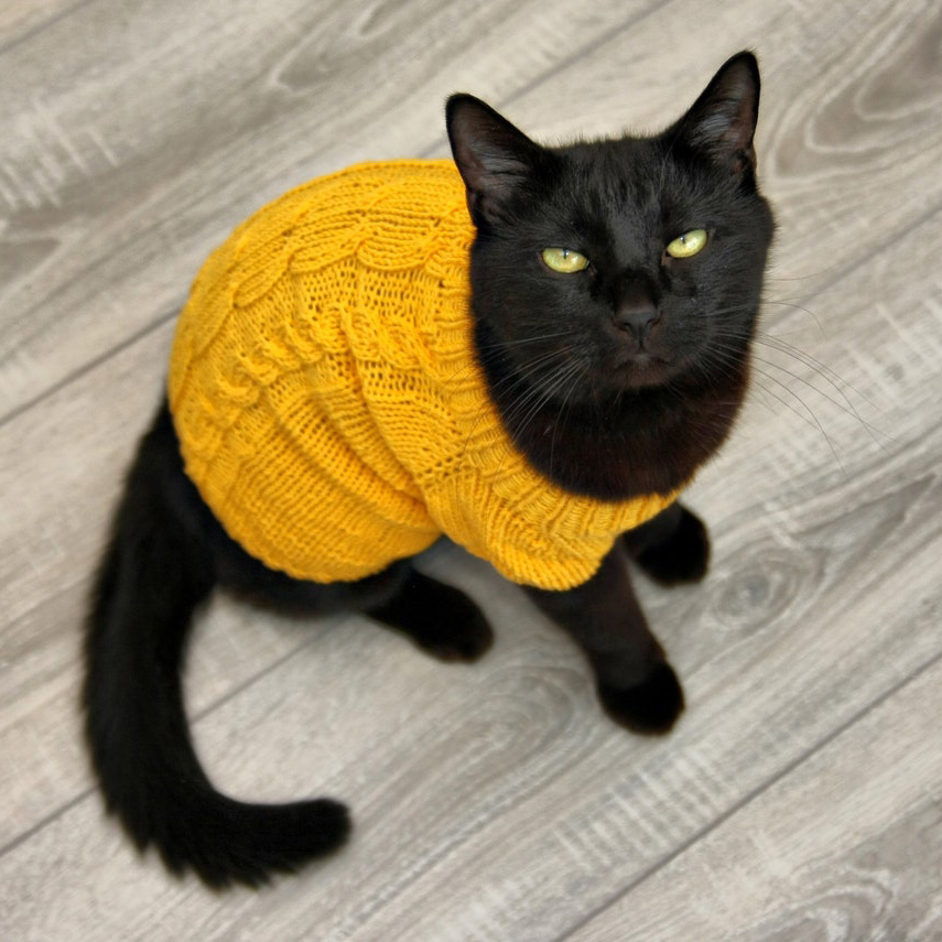 Cat wearing a Classic Braids, Hand-knitted Cable Cat Sweater sitting on a gray floor