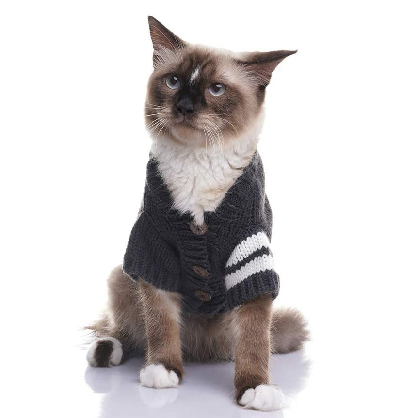 Cat wearing a EXPAWLORER Cat Sweater for Cold Weather on a white background