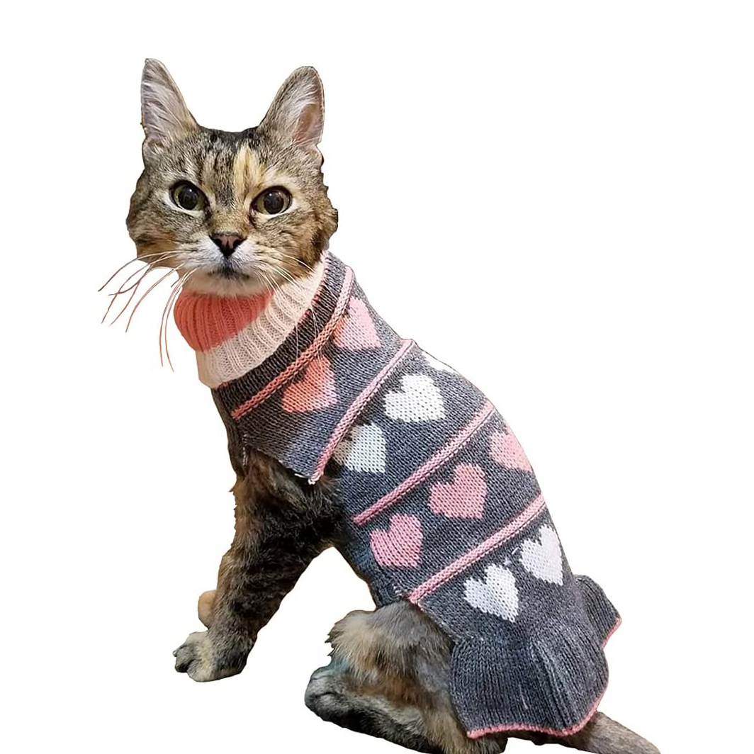 Cat wearing a Fashionable Turtleneck Cat Sweater on a white background