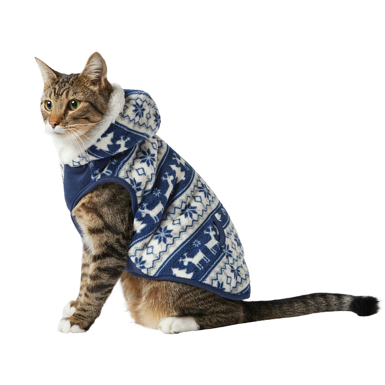 Cat wearing a Frisco Fair Isle Fleece Lined Cat Hoodie on a white background