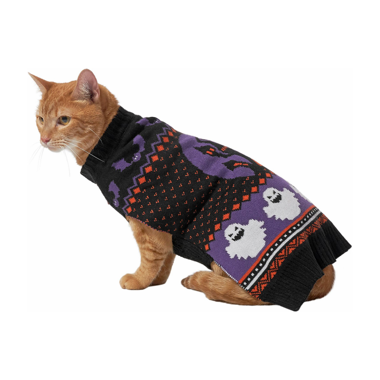 Cat wearing a Frisco Spooky Ghost Dog & Cat Sweater on a white background