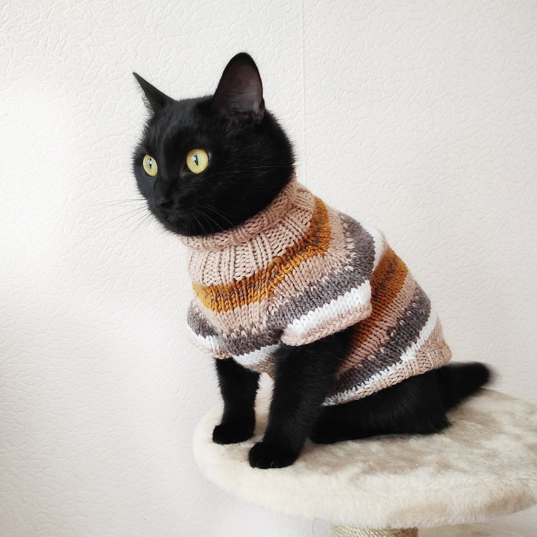 Cat wearing a Norwegian Cat Sweater sitting on cat stand