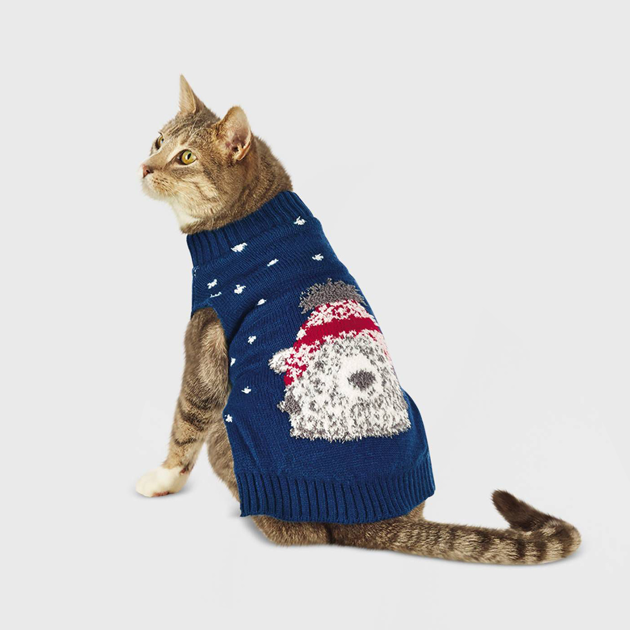Cat wearing a Polar Bear Dog and Cat Sweater on a gray background