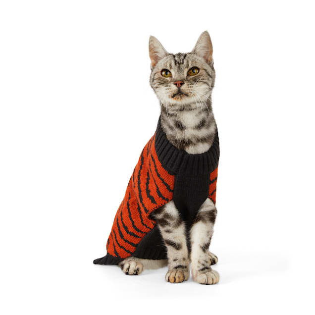 Cat wearing a YOULY The Party Animal Tiger-Print Cat Sweater on a white background