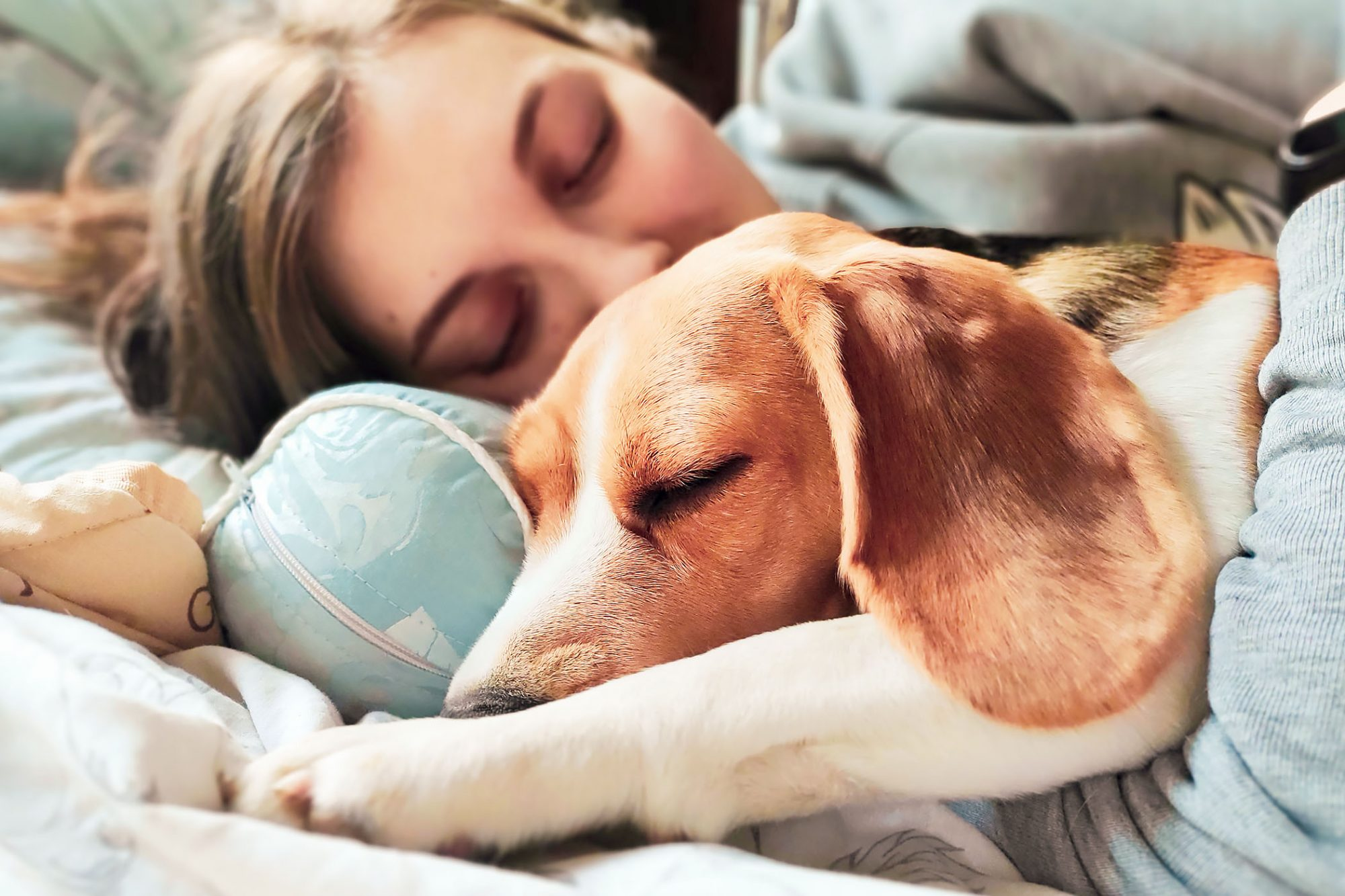 woman sharing a bed with her dog sleeping next to each other