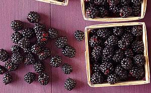 Blackberry fruits