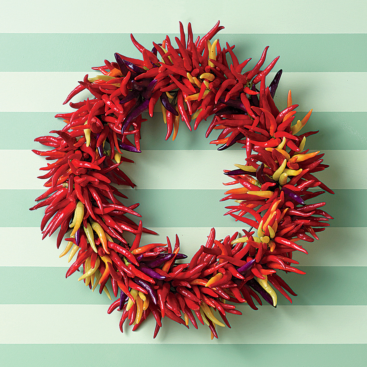 purple, red, yellow and orange chiles wreath