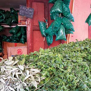 Morocco Herb