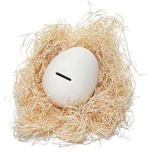 Fun Nest Egg