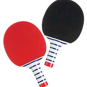 Fun Ping Pong Set