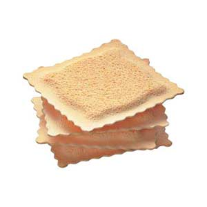 Fun Spongi Oil Sponges