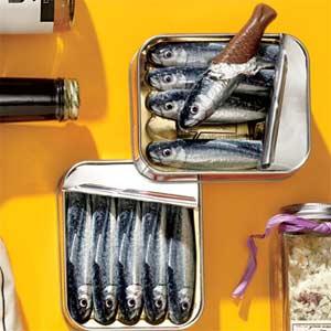 sardine chocolate