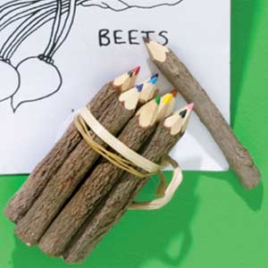Faves Little Ones Eco Friendly Colored Pencils