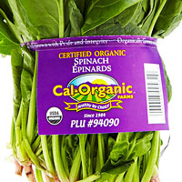 Certified organic spinach