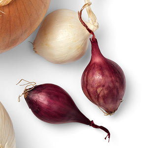 A Guide to Onions - Pearl Onions
