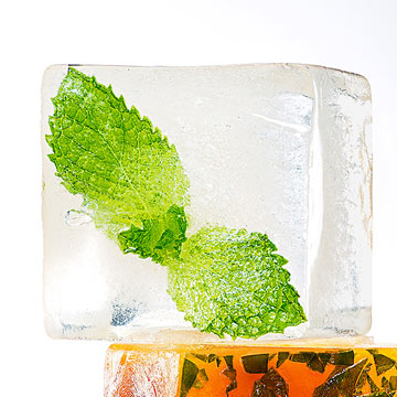 Mint Leaf Ice Cube