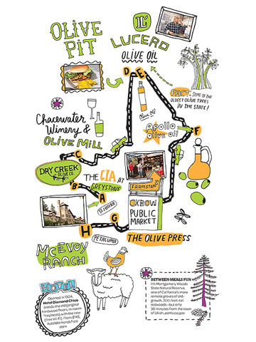California: Olive Oil Trail
